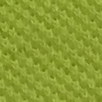 Honeycomb-35.jpg